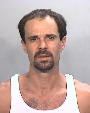 Michael Purvis, felony suspect